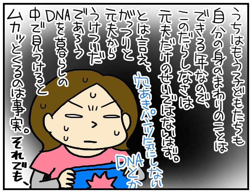 アメリ母さん:共同親権:元夫のDNAそのままでムカつくのは事実です