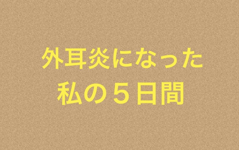 f:id:gokigenneco:20190814194844j:plain