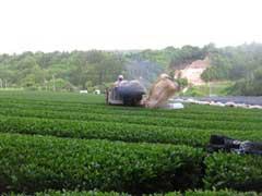 f:id:gokujo_okujo:20110522142657j:image
