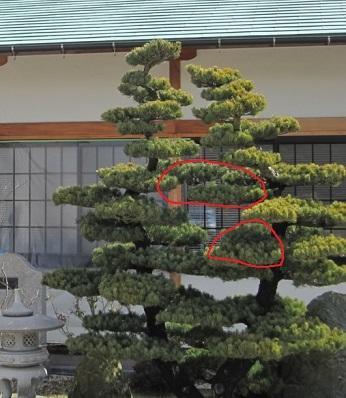 f:id:gokurakuboen:20161121104228j:plain