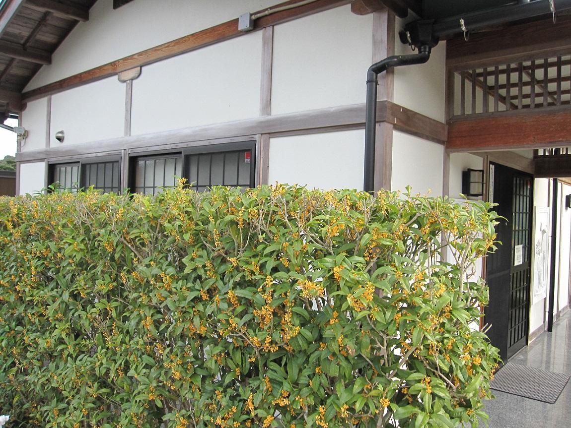 f:id:gokurakuboen:20190928153132j:plain