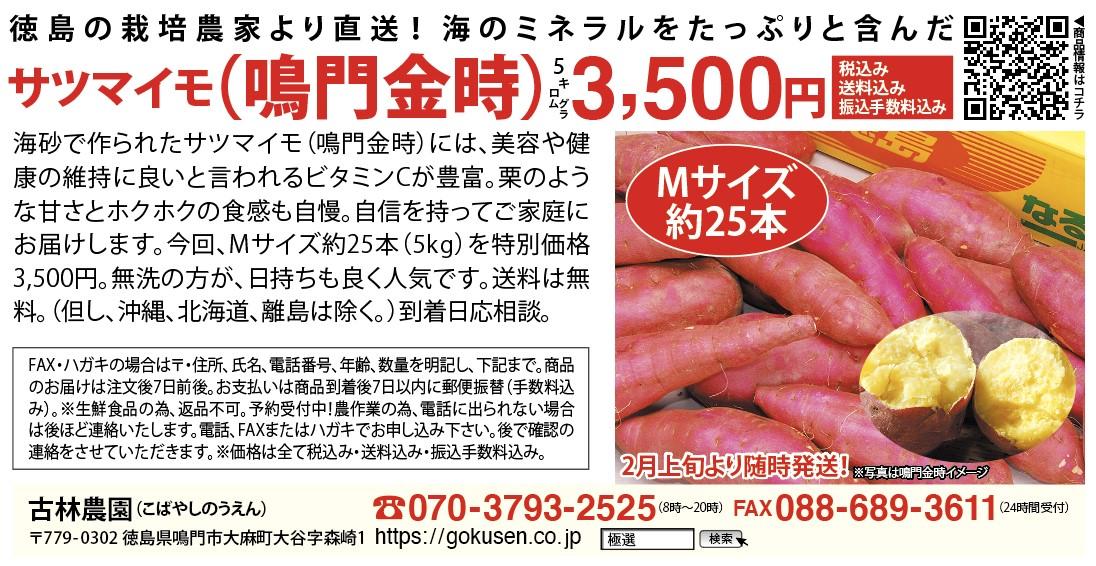 f:id:gokusenblog:20210126101422j:plain