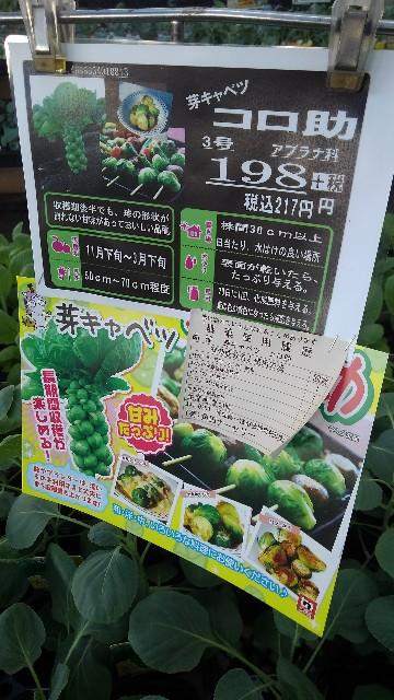 f:id:gokusenblog:20210918184015j:image