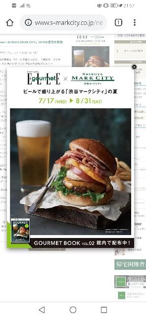 f:id:golbe_onsen:20190805215806j:image
