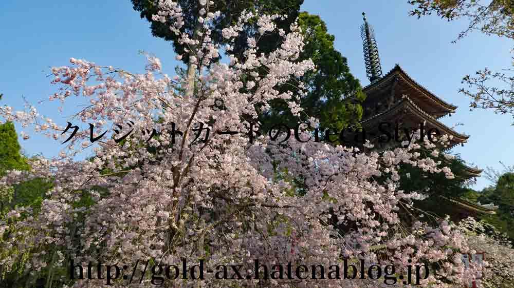 アメックス 醍醐寺 桜の夜間特別拝観 伽藍の五重の塔と桜