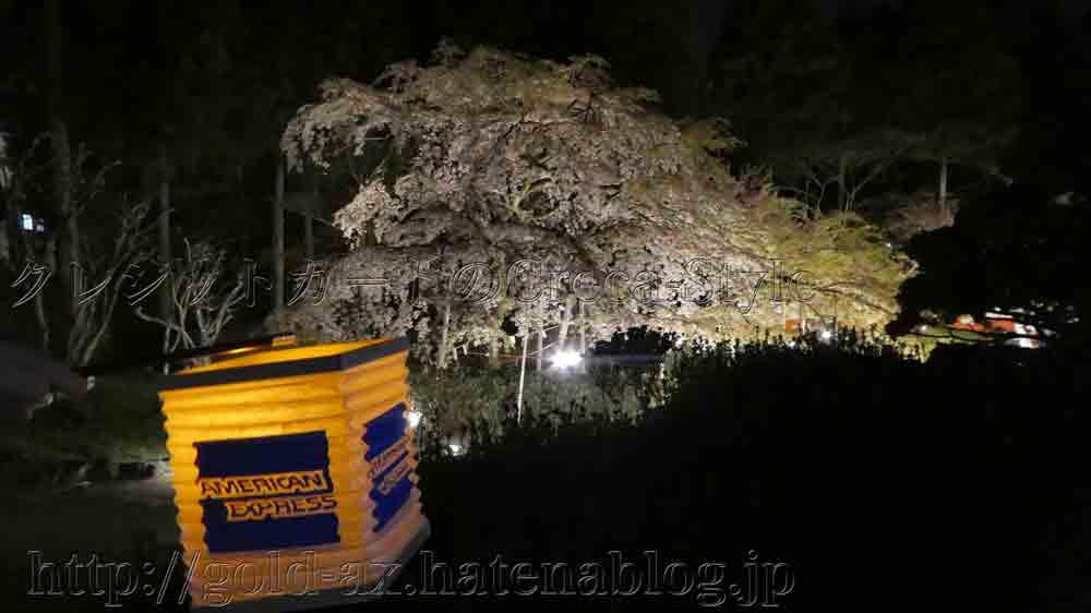 アメックス 醍醐寺・三宝院の桜の夜間特別拝観 憲深林苑