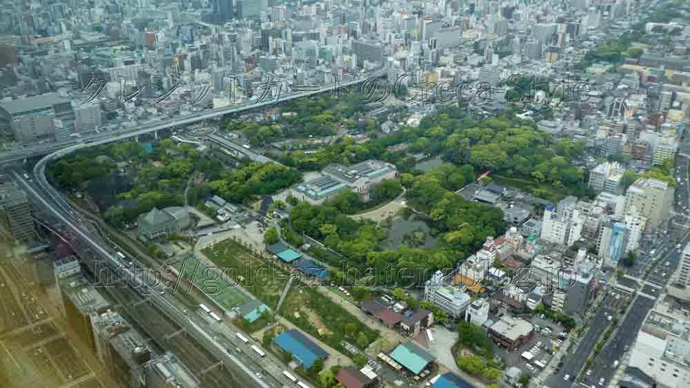 大阪マリオット都ホテルのスーペリアルームから天王寺公園(動物園)が見える