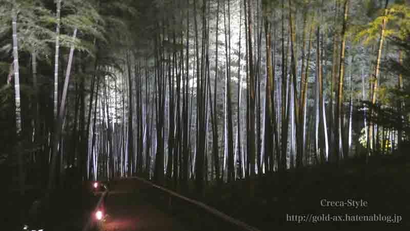 高台寺の竹林もライトアップ