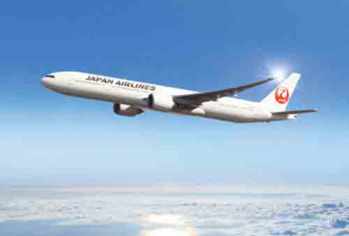 アメックスビジネスゴールド JAL ONLINE(オンライン)