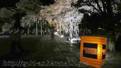 アメックス 京都 醍醐寺・三宝院 桜の夜間特別拝観