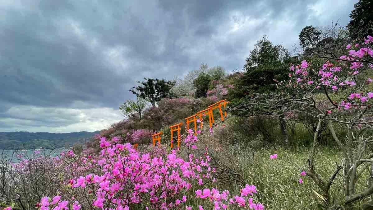 宮津 獅子崎稲荷神社