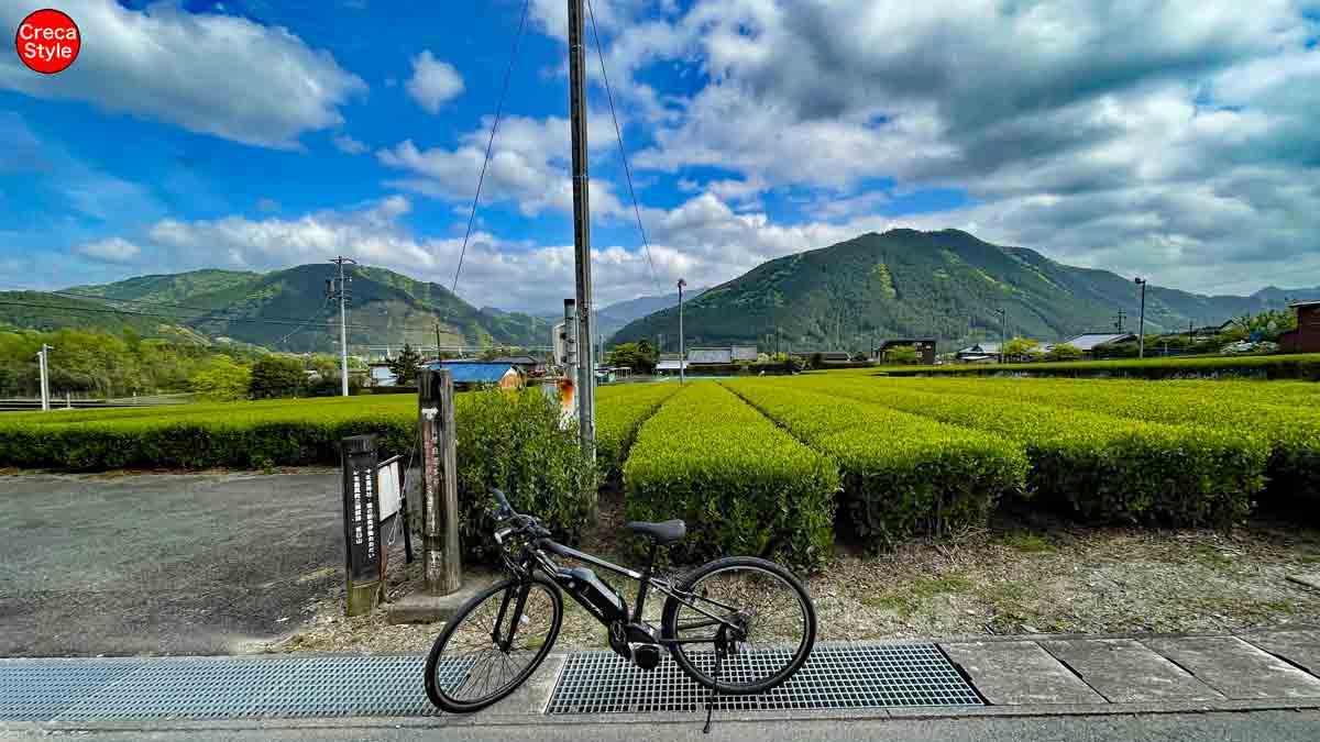 大台町観光協会 茶臼山