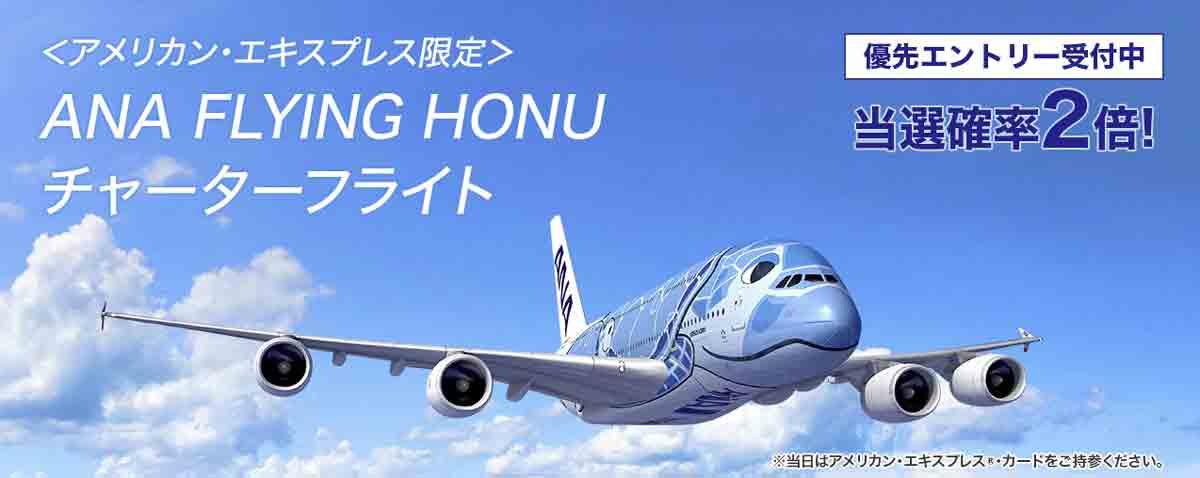 アメックス ANA FLYING HONU チャーターフライト