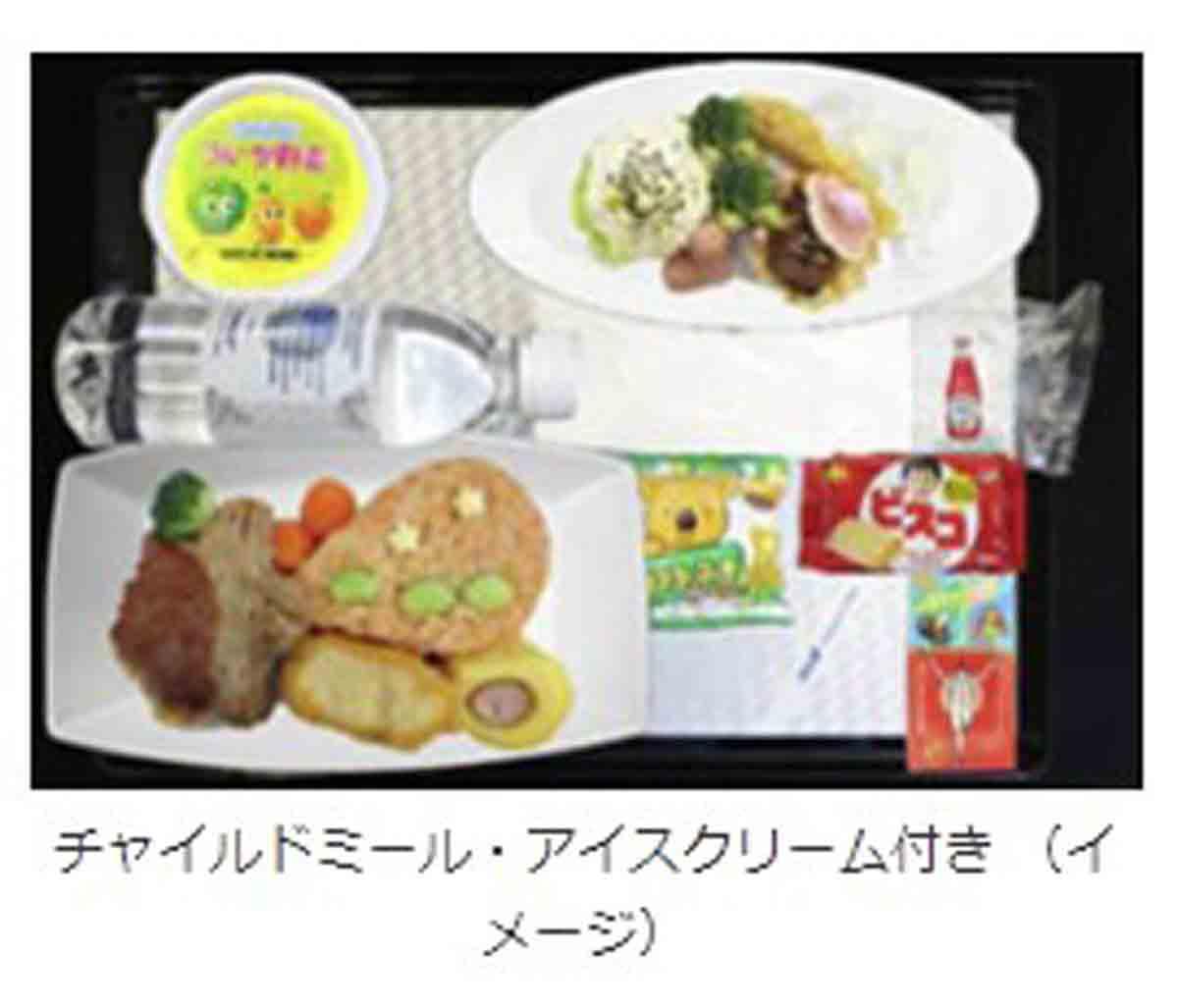 アメックス ANA FLYING HONU チャーターフライトお子様用機内食
