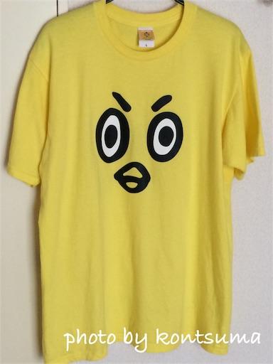 ひよの山 Tシャツ
