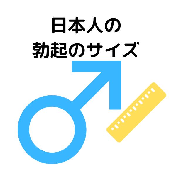 日本人の勃起のサイズ
