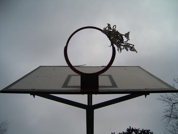 20090303204016