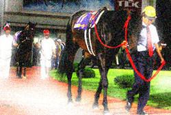 f:id:goldhead:20100129104124j:image:left