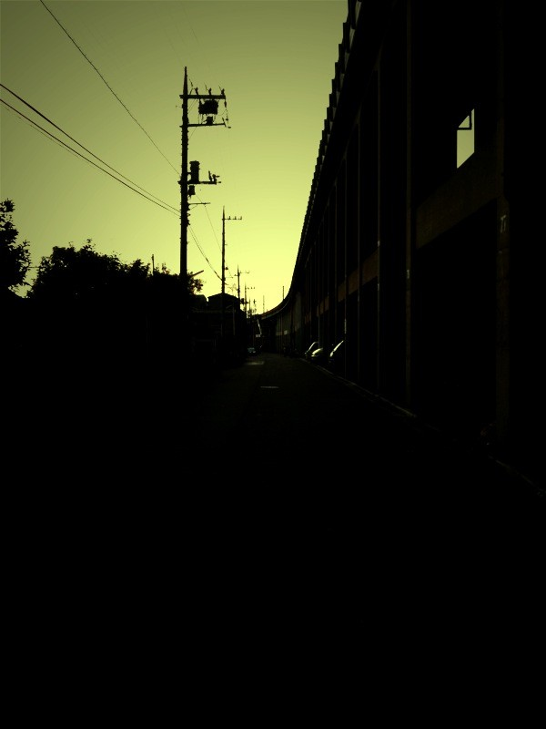f:id:goldhead:20100131184325j:image