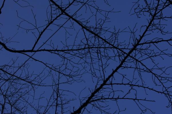 f:id:goldhead:20110103012953j:image