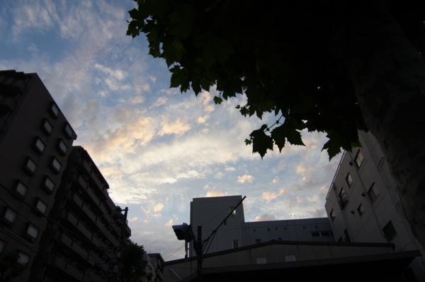 f:id:goldhead:20120613203351j:image