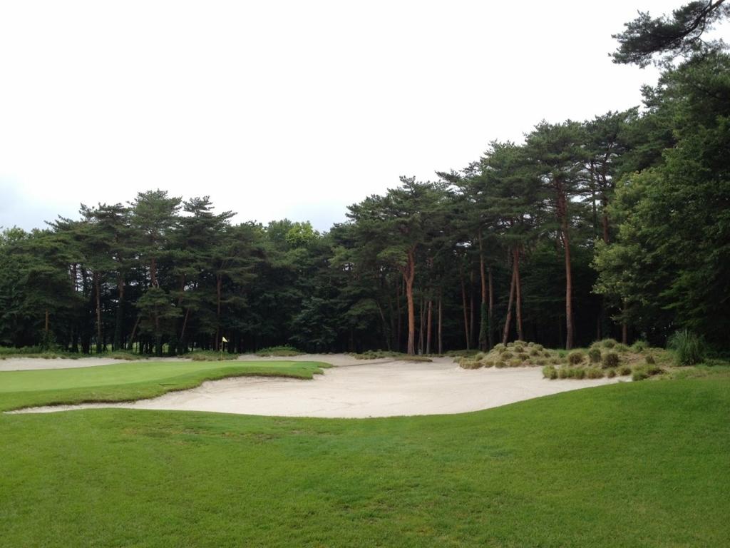 f:id:golf103:20180106223803j:plain