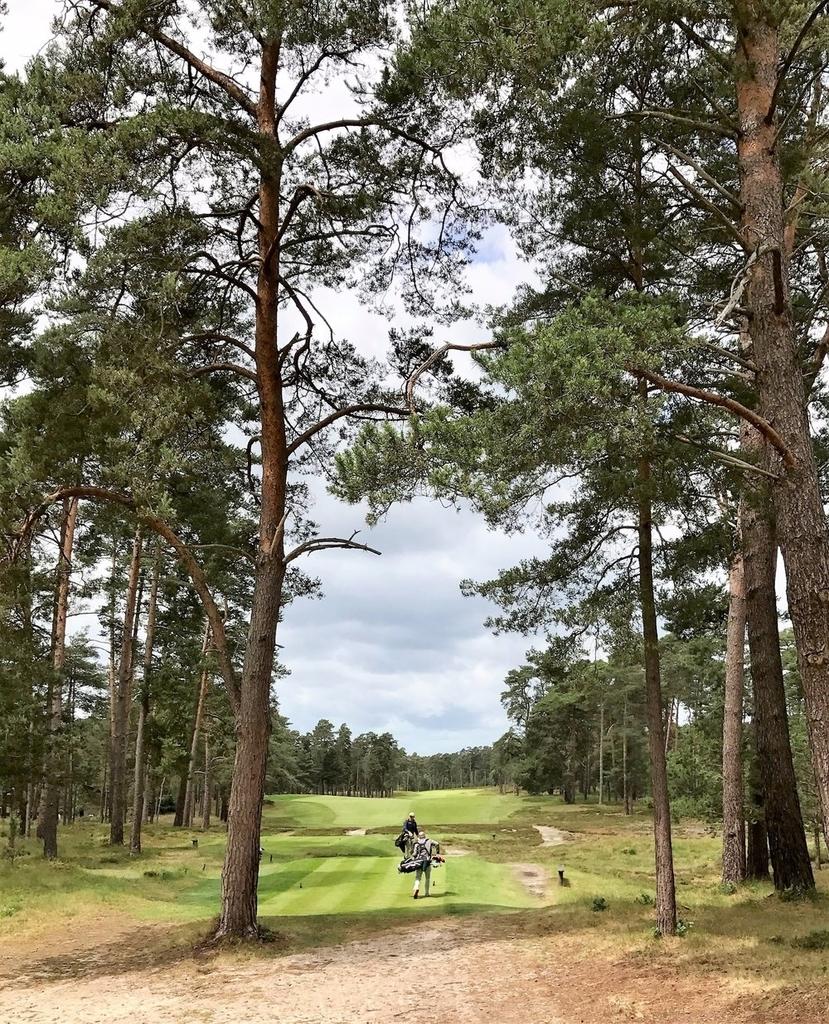 f:id:golf103:20190111153615j:plain
