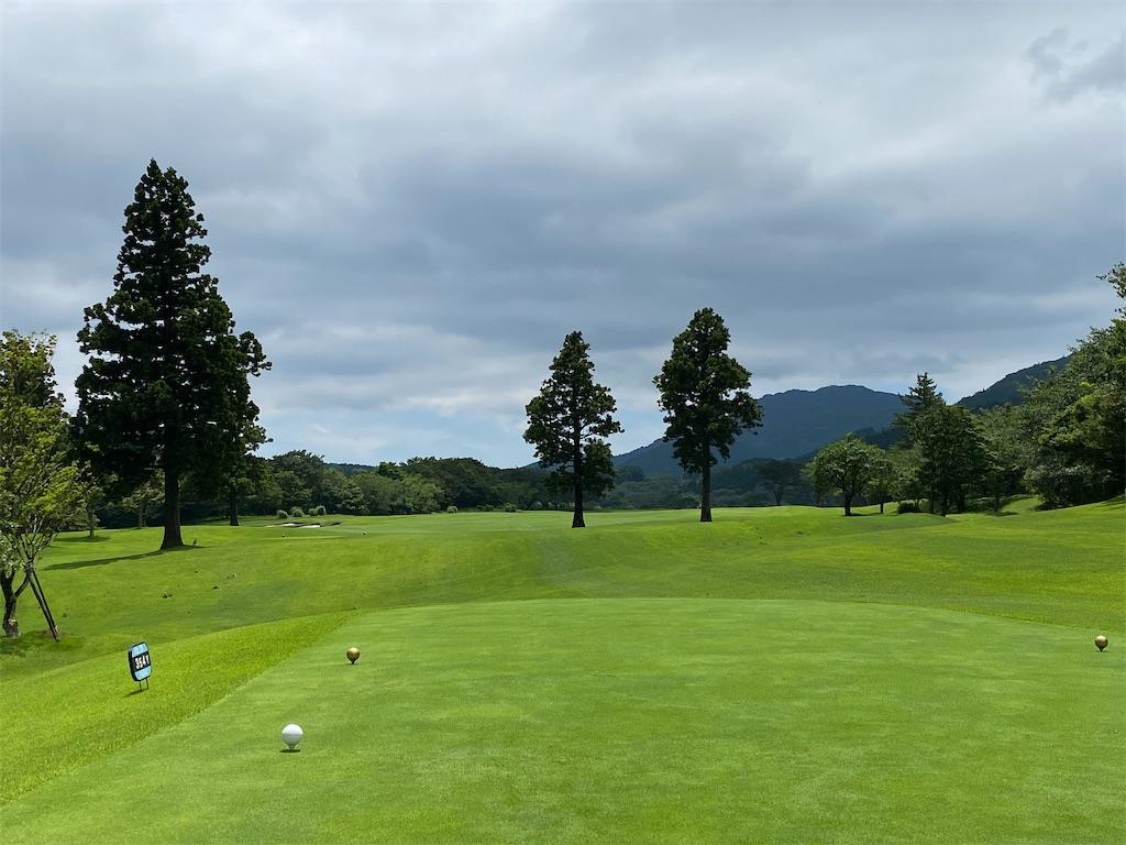 f:id:golf103:20200703175013j:plain