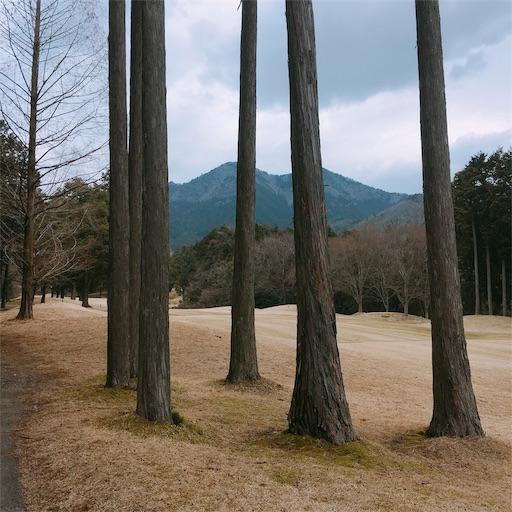 f:id:golf8:20190324211233j:image