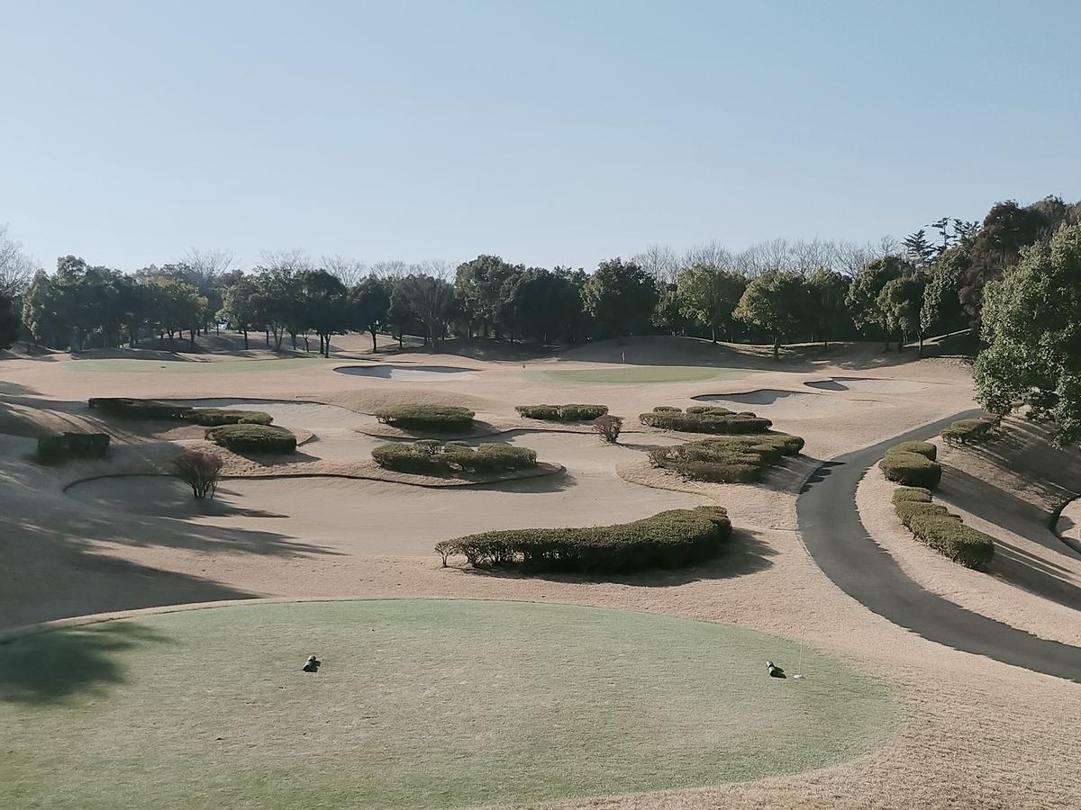 f:id:golf_shiro:20210122095241j:plain