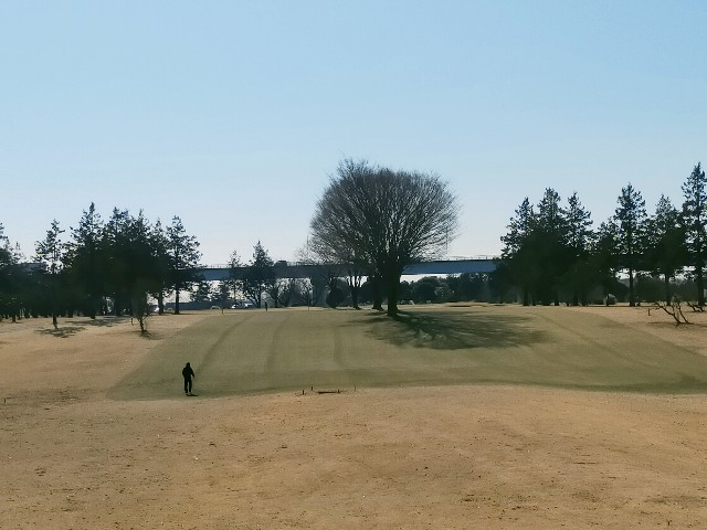 f:id:golf_shiro:20210205195510j:image