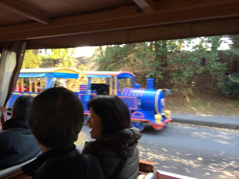 広い昭和記念公園!!移動手段は園内バス!!