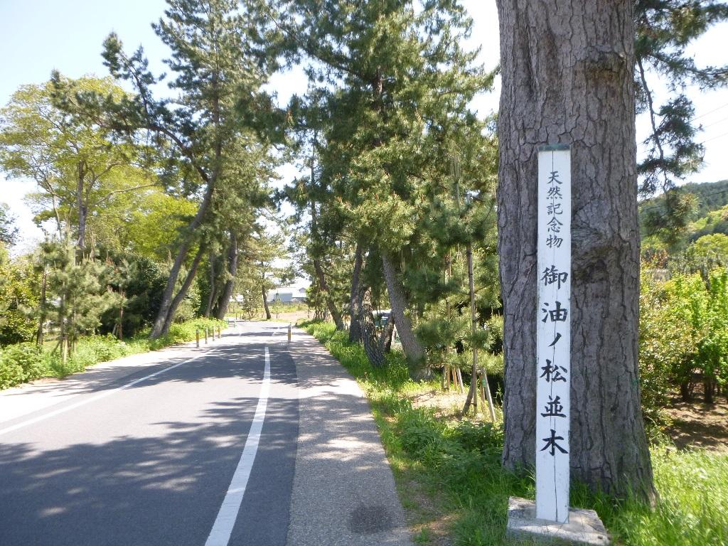 f:id:gomashio-oyaji:20200428210851j:plain
