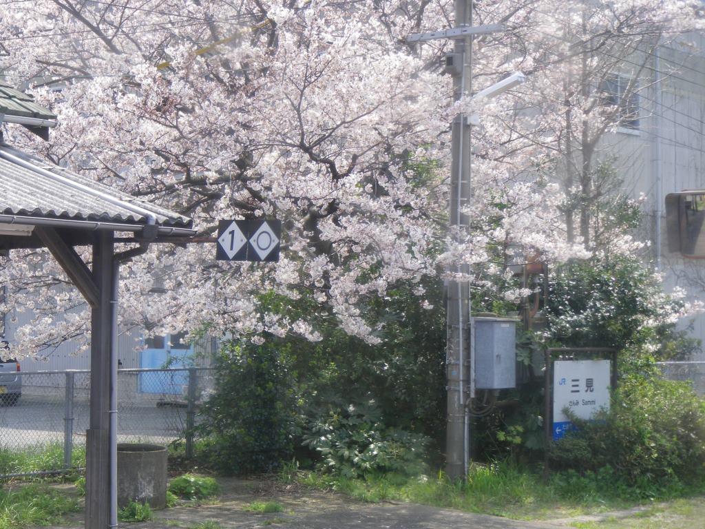 f:id:gomashio-oyaji:20200520190149j:plain