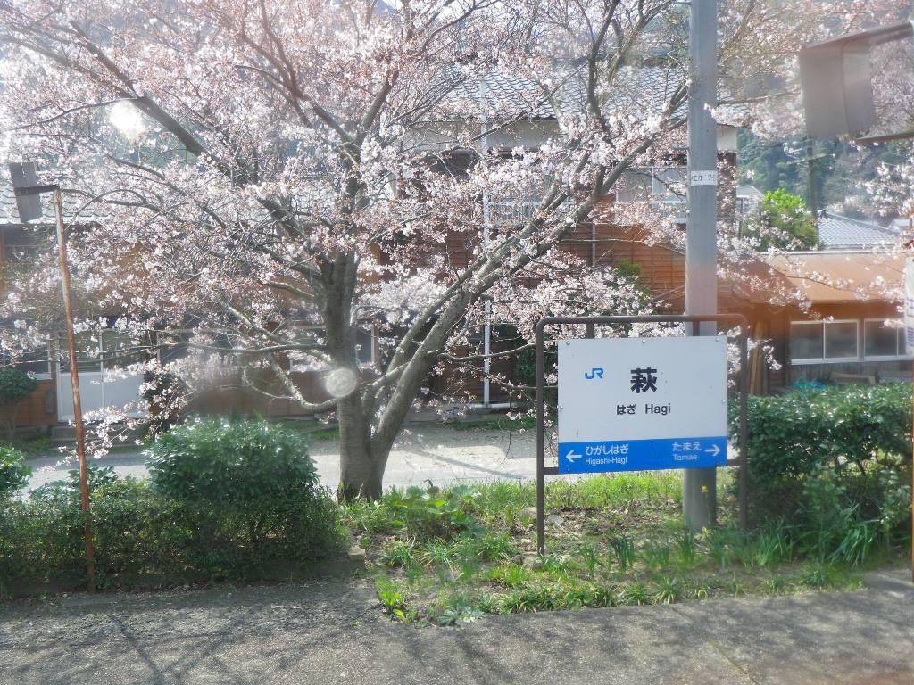 f:id:gomashio-oyaji:20200520190252j:plain
