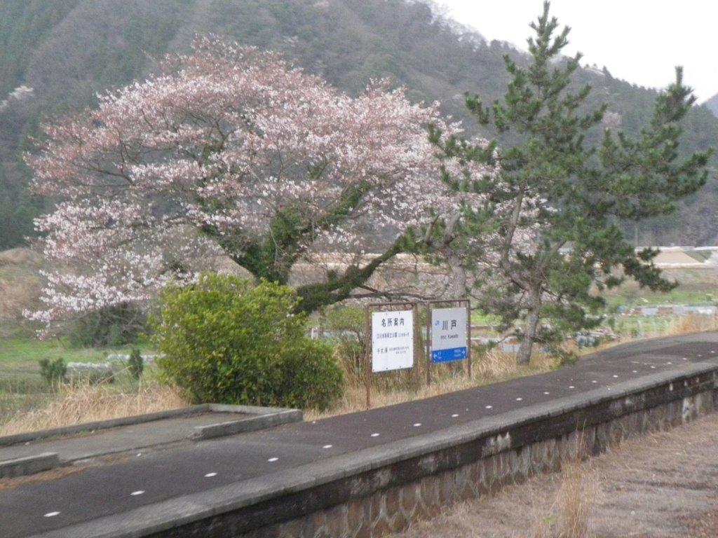 f:id:gomashio-oyaji:20200520192012j:plain