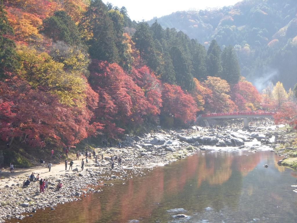 f:id:gomashio-oyaji:20200604214209j:plain