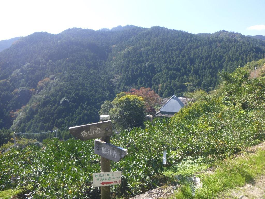 f:id:gomashio-oyaji:20200608220402j:plain