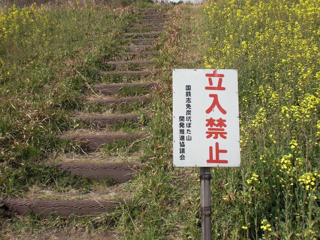 f:id:gomashio-oyaji:20200613191736j:plain