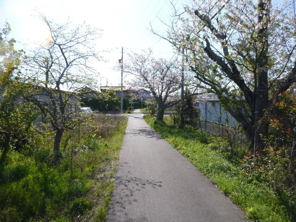 f:id:gomashio-oyaji:20200614185711j:plain
