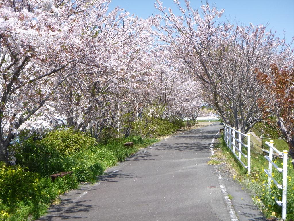 f:id:gomashio-oyaji:20200614190032j:plain