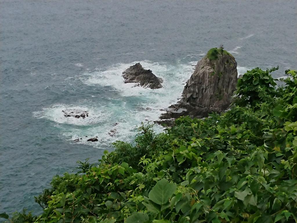 f:id:gomashio-oyaji:20200726202824j:plain