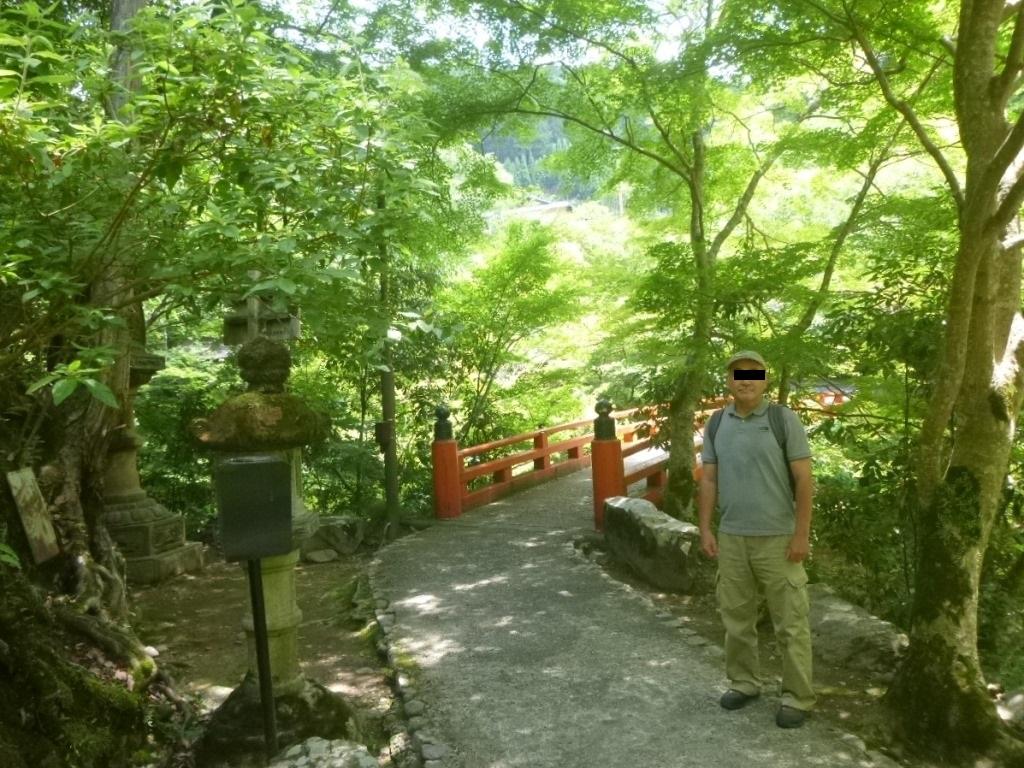 f:id:gomashio-oyaji:20200811214532j:plain