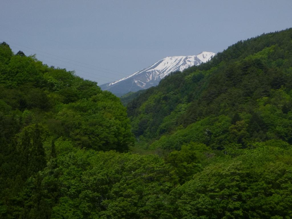 f:id:gomashio-oyaji:20200830205116j:plain