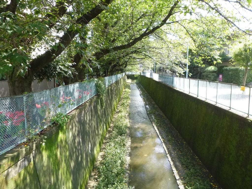 f:id:gomashio-oyaji:20200912223303j:plain