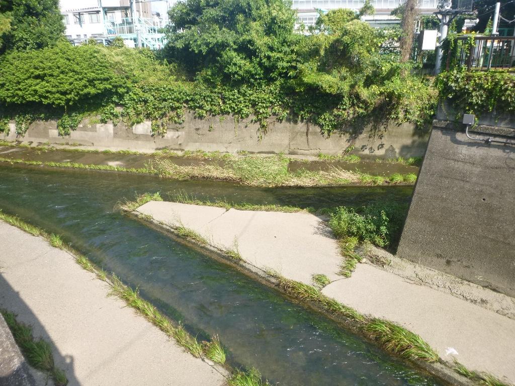 f:id:gomashio-oyaji:20200912223435j:plain