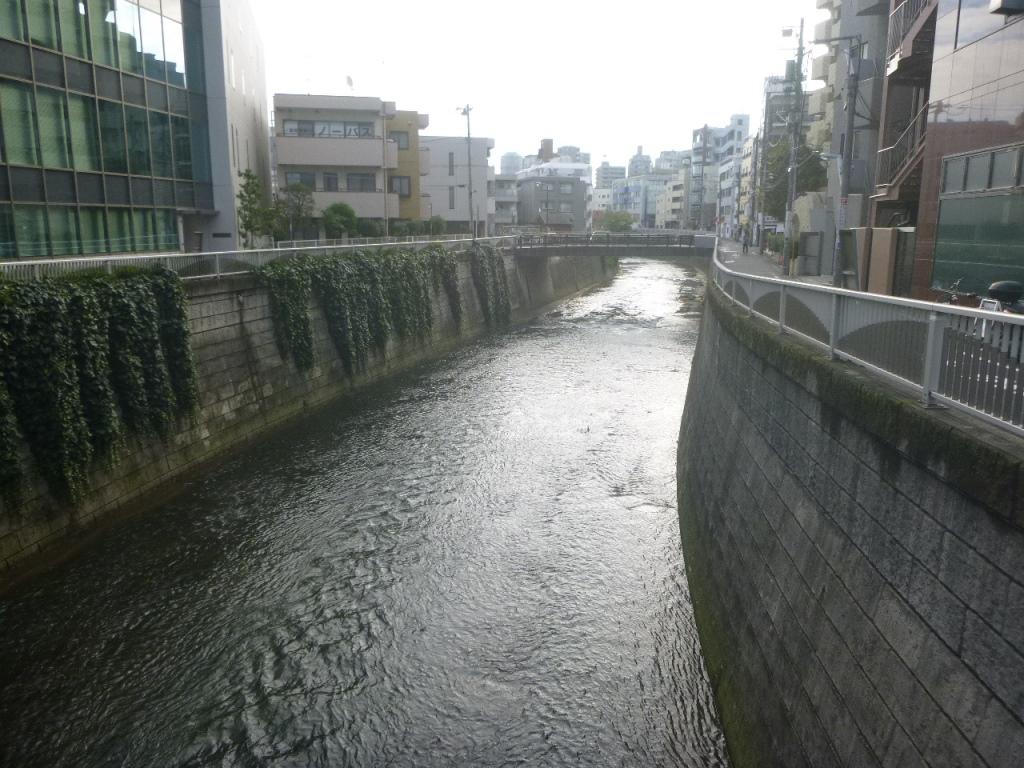 f:id:gomashio-oyaji:20200915213100j:plain
