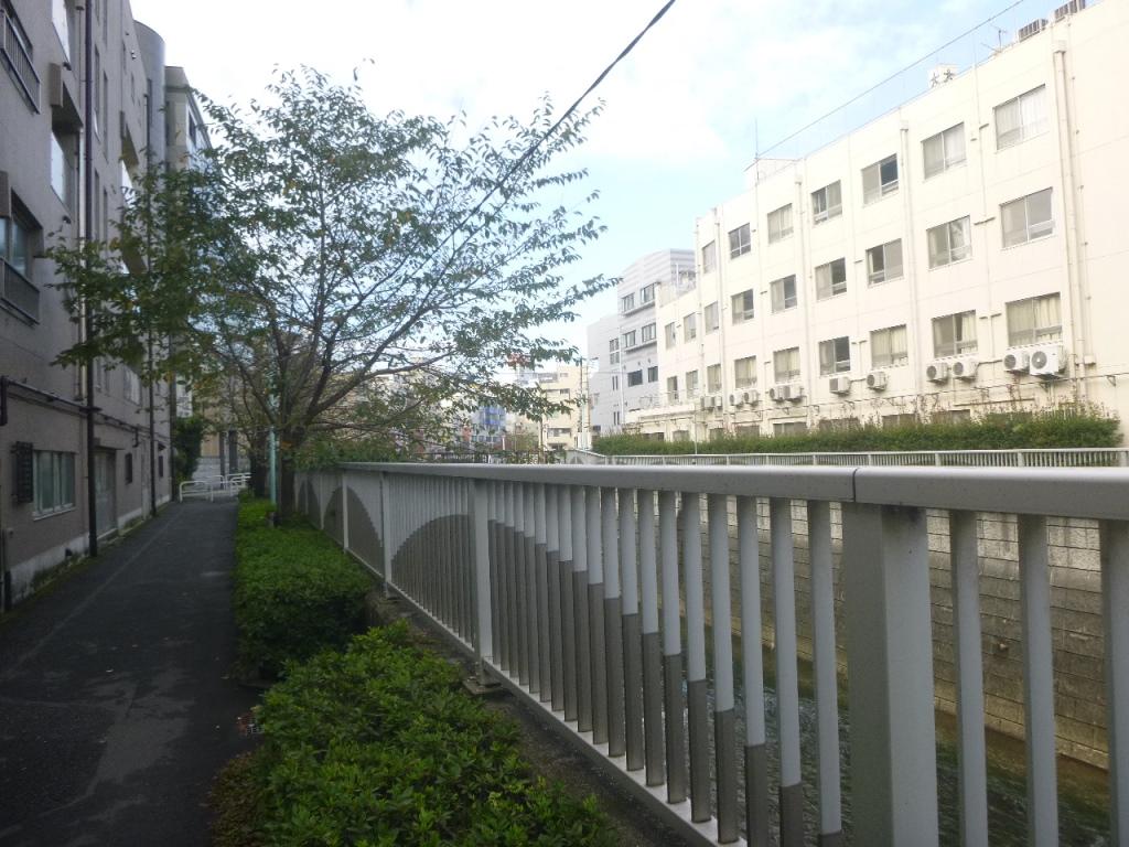 f:id:gomashio-oyaji:20200915213124j:plain