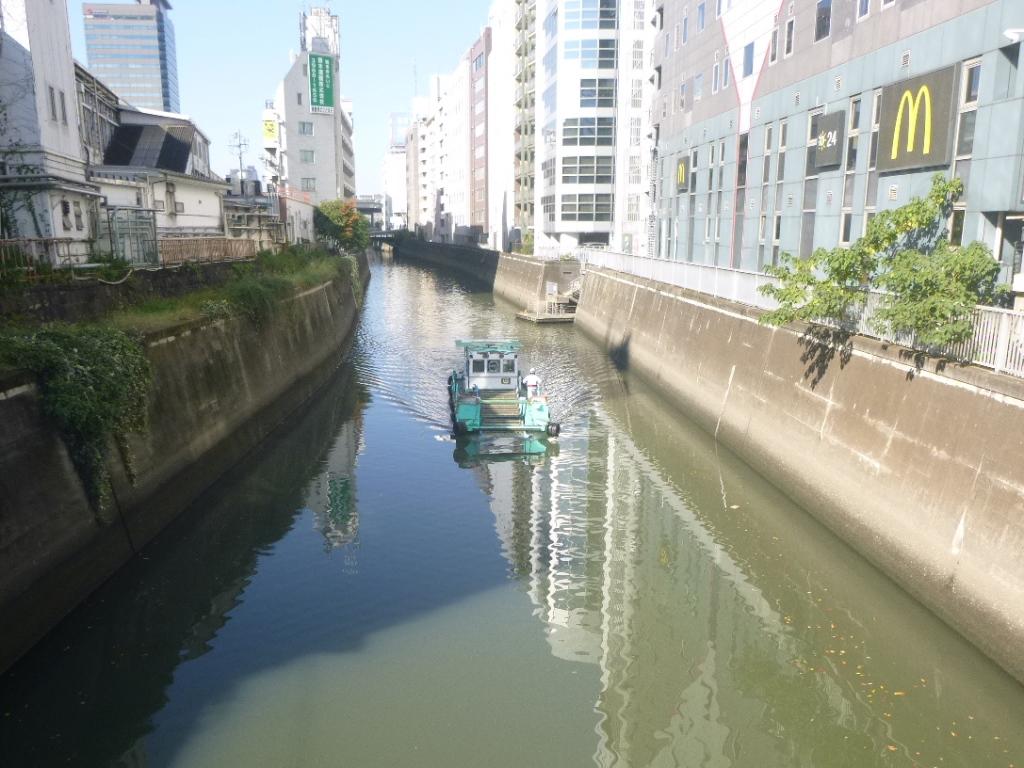 f:id:gomashio-oyaji:20200915213446j:plain