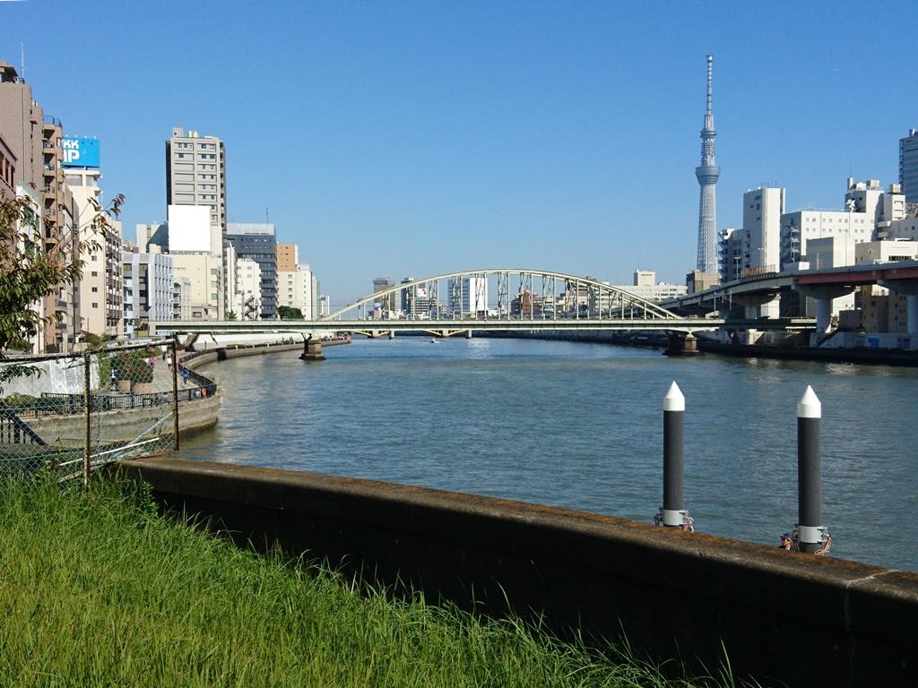 f:id:gomashio-oyaji:20200915213902j:plain